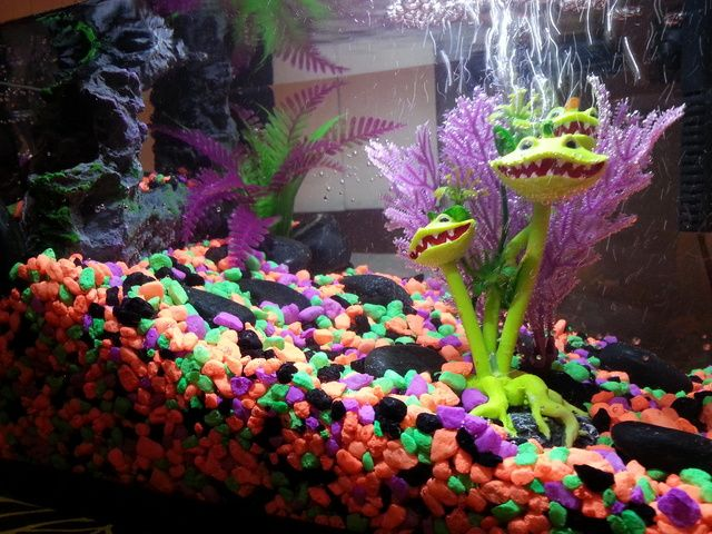 Halloween Town - Spooky Fish Tank! Fish Tank Fantasies Pinterest - halloween fish tank decorations