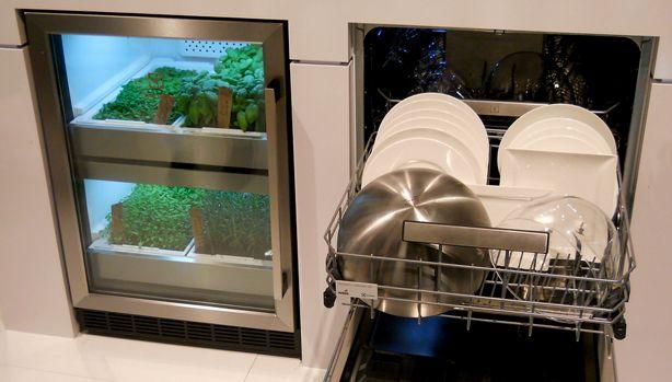 urban-cultivator-under-counter-kitchen-greenhouse