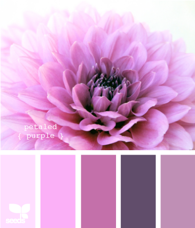 petaled purple .. oooo! I like this for a wedding color pallette - or a bedroom too!