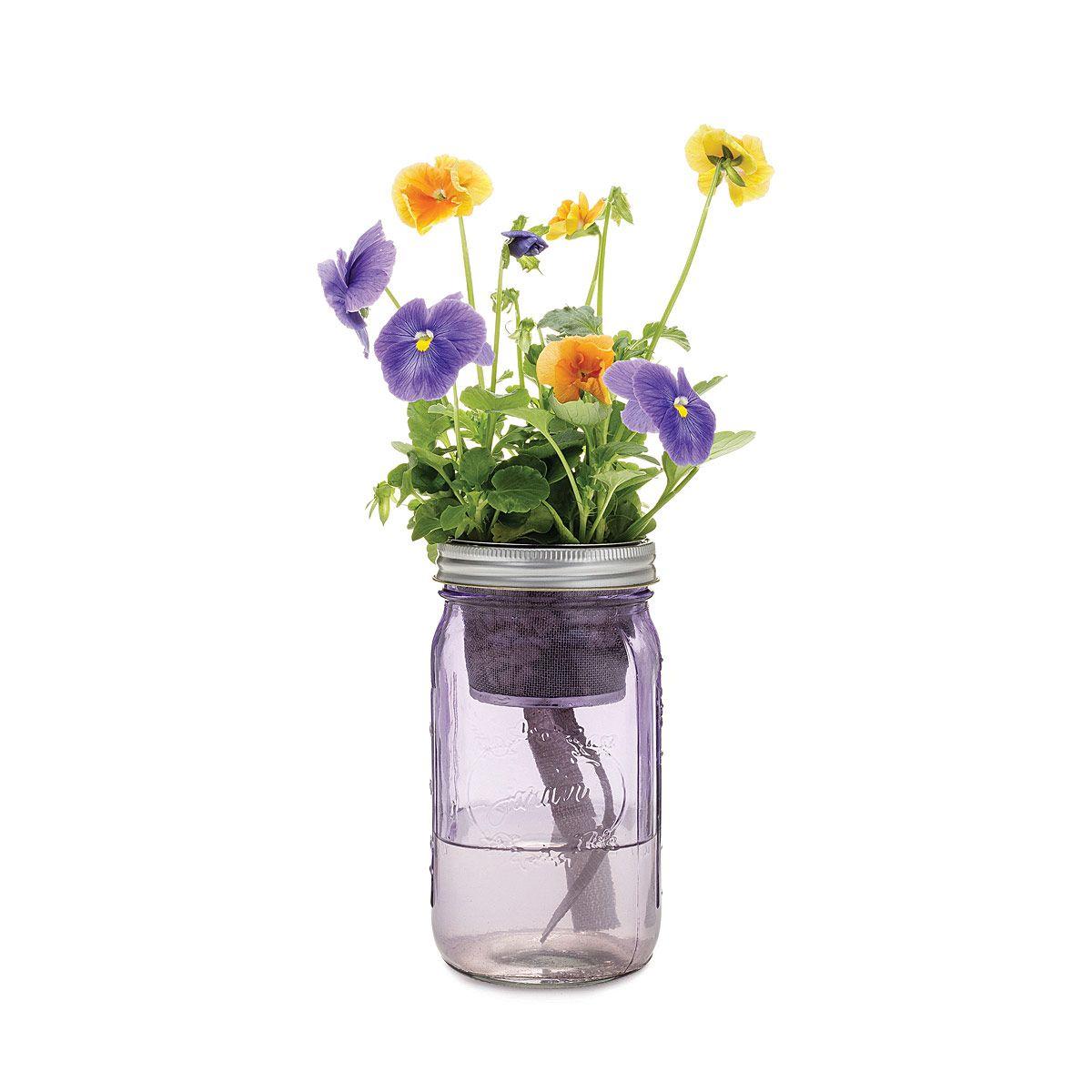 Mason Jar Indoor Flower Garden | window garden ...