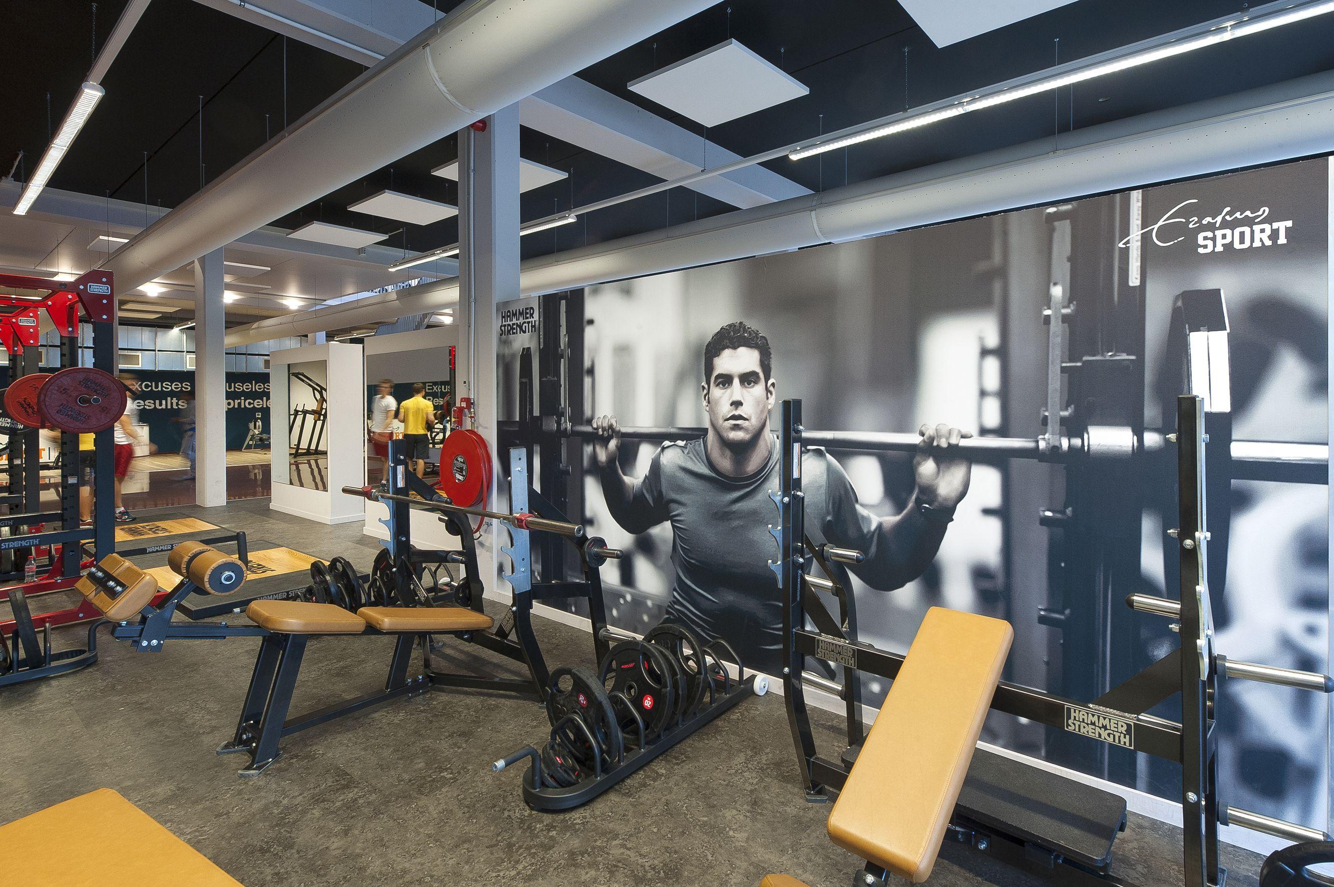 My workplace Erasmus Sport Fitness Center, Erasmus