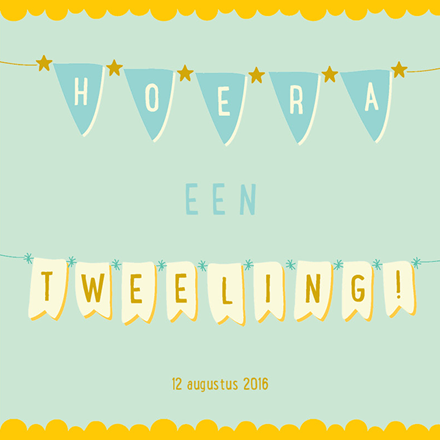 #geboortekaartje #vlaggetjes #slinger #tweeling #jongens