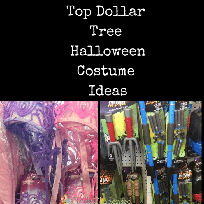 The Best Dollar Store Halloween Costume Ideas Dollar