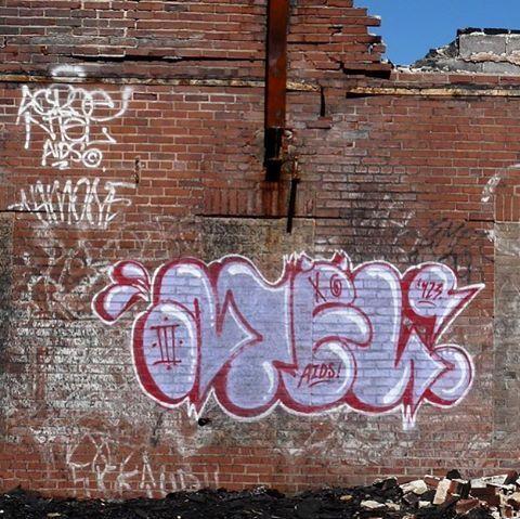 """""""... Just ask the lonely."""" - NTELONER #ntel #nteligent #aidscrew #fineart #streetart #graffiti #abstract #acroe #bombing #tagsandthrows #spraydaily #12ozprophet #fillins #feelings #trackside #gokillyourselfie #ww3"""