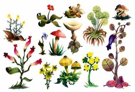 14 plants Drawing background ideas