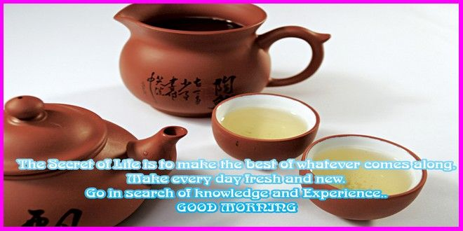 Have A Nice Day Good Morning Whatsapp Photos,Good Morning Have A Nice Day  Images Are The Best Way To Send Wishes To Your Old Friend Or Fami