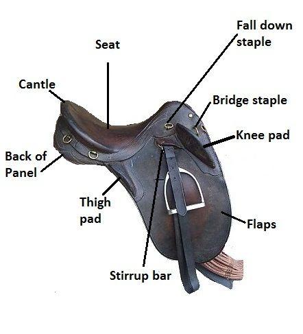 Australian Saddle Diagram Online Schematic Diagram