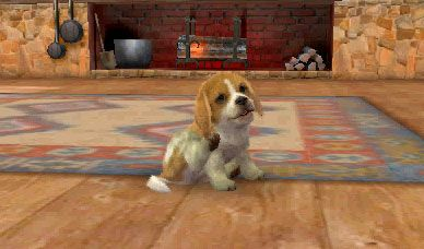 Going Out With Your Pet Nintendogs Cats Puppy Play Your Pet
