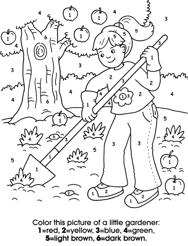 My Busy Backyard Activity Book 6 Sample Pages With Answers
