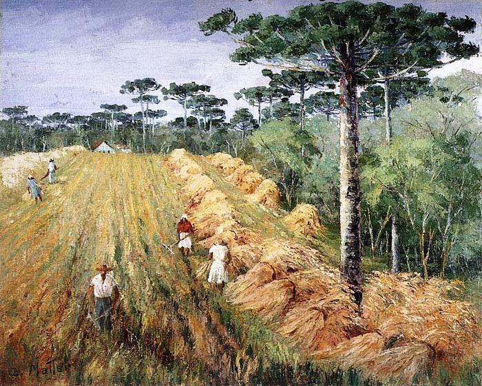 Plantação de trigo no Paraná Guilherme Matter (Brasil, 1904-1978) óleo sobre tela