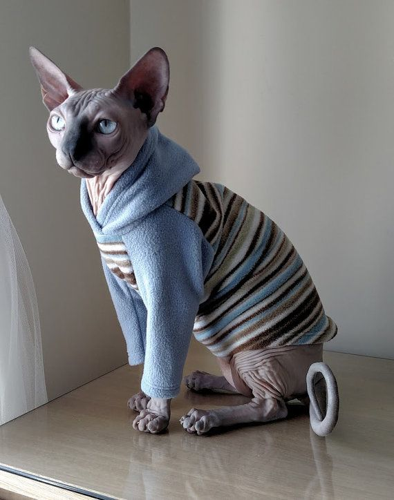 KatzeKleidung Größe MEDIUM / Katze Pyjamas / von