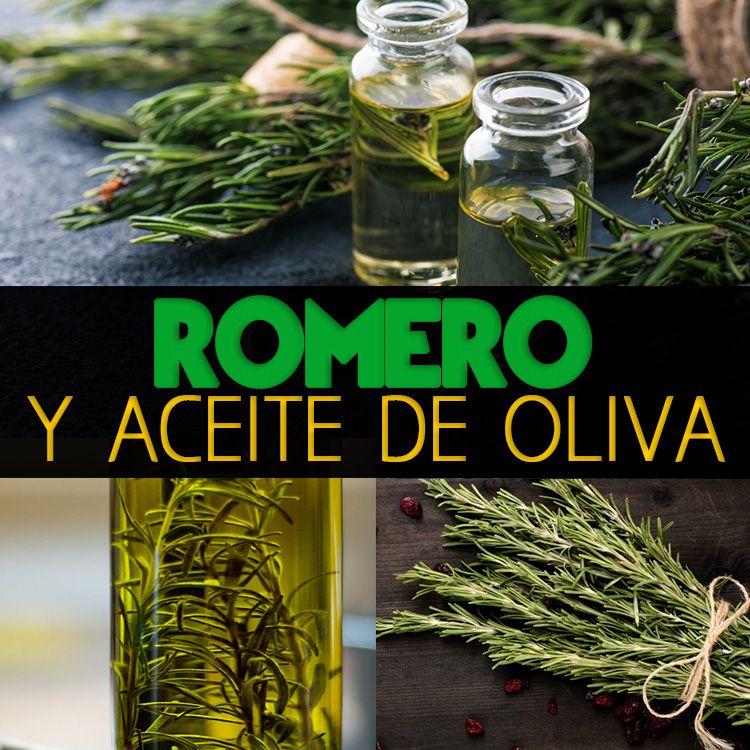Romero Y Aceite De Oliva Para Mejorar Tu Piel Y Cabello Receta La Guía De Las Vitaminas Herbalism Table Decorations Beauty