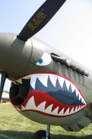 P40 Tigershark Plane Ww2 Aircraft Fighter Military Fighting