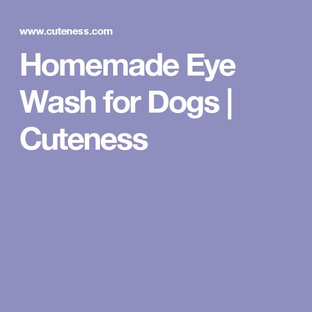 Homemade Eye Wash for Dogs | Cuteness | peabody | Dog ear