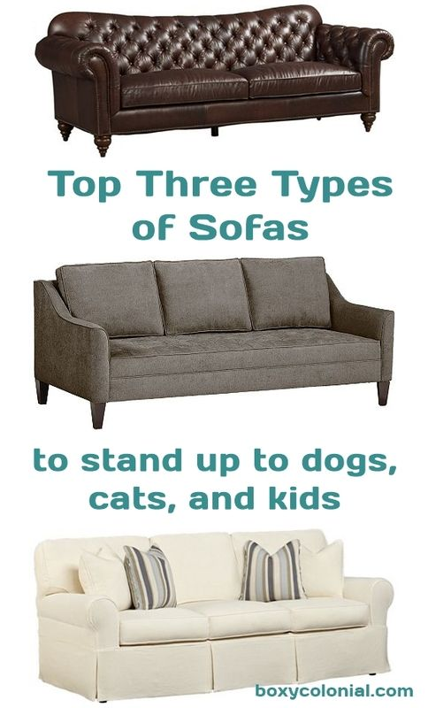 leather or fabric sofa for dogs how to reupholster a seat cushion have pretty while also having cats and kids hilarious guide all your couch needs sofaguide