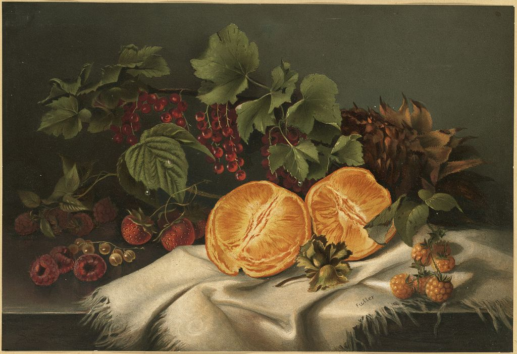 File name: 07_11_000840  Title: Summer Fruit  Creator/Contributor: Fuller, S…