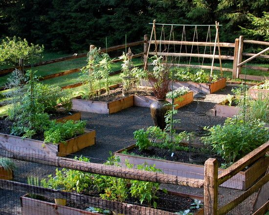 Simple Vegetable Garden Fencing Ideas: Traditional Landscape Healthy Vegetable  Garden Raised Beds Were Built And