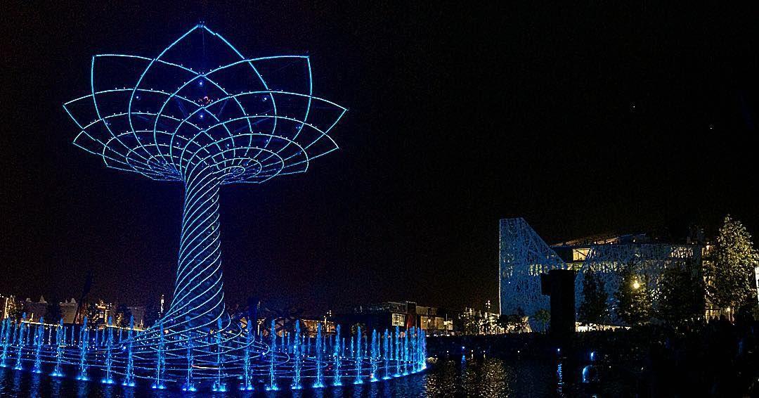 #alberodellavita #expo2015 #italia#pavillon#night#expomilano2015#blue#lights#treeoflife#instamike#instapic#milanodavedere#dafareamilano#loves_milano#milan#igersmilano#tagsforlikes#like4like#instalove#follow4follow by ellarja