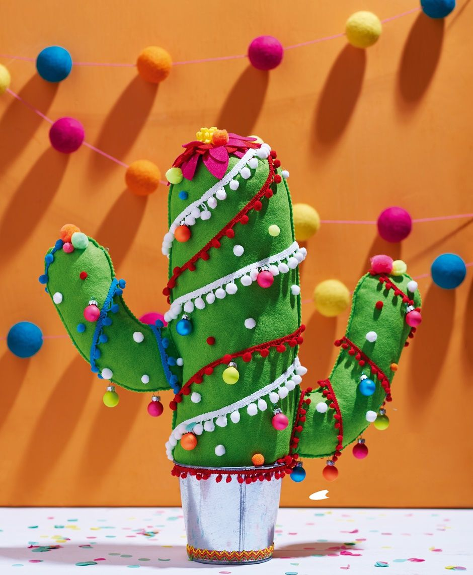Christmas Tree Cactus Anyone Homemaker Issue 50 Image Cliqq Co Uk