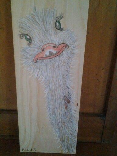 Autruche pastels et crayons aquarelle sur planche de bois Paskal\u0027S
