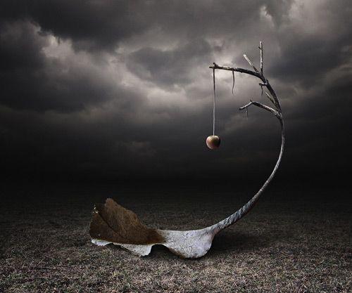 Creatively Edited Photography   Photography Inspiration ...