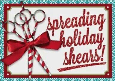 Merry Christmas Holiday Hair Salon Christmas Salon Salon Promotions