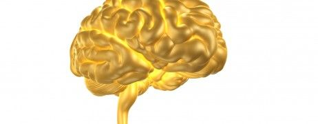 Hjärnsmart arbete förebygger stress och utmattning