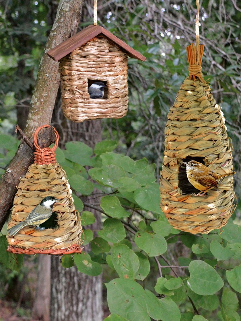 Rustic Birdhouses Roosting Pockets Wren Bird House