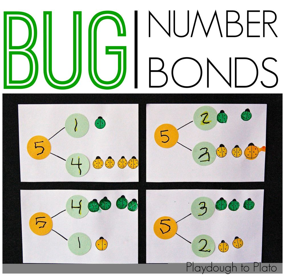 Bug Number Bonds Plato And Numbers