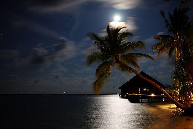 beach by moonlight