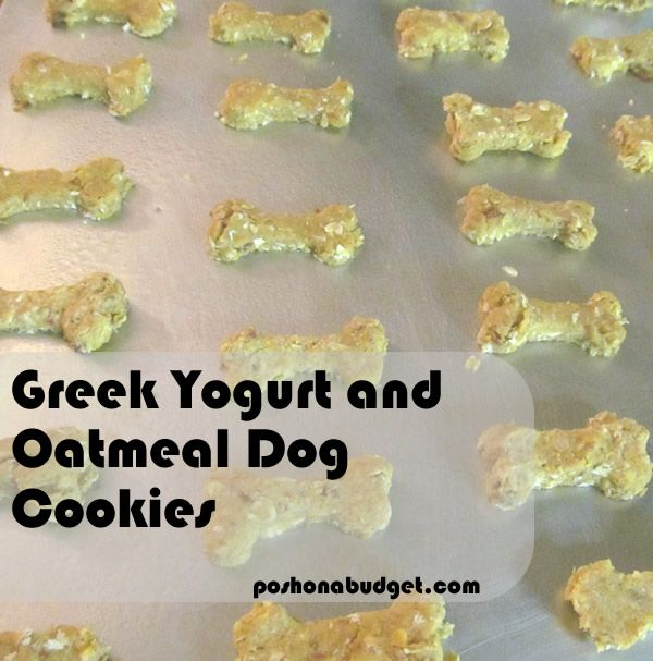 Greek Yogurt And Oatmeal Dog Cookies Dog Food Recipes Homemade