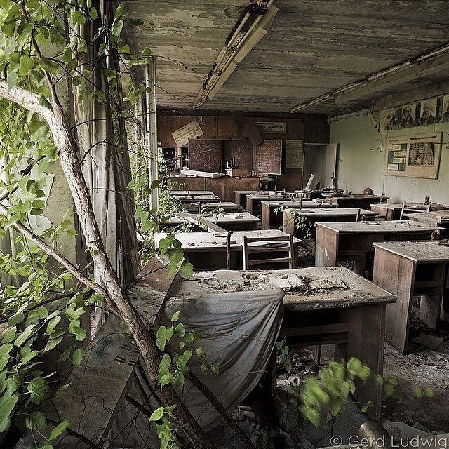 Trees Grow In A School Abandoned Following The Meltdown At