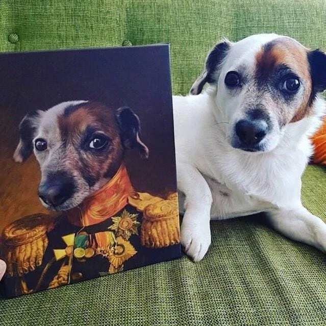 The Veteran Custom Pet Canvas In 2020 With Images Custom Pet Art Animal Art Pet Portraits