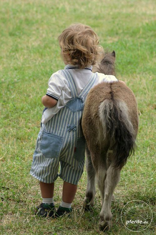 Companions Animals For Kids Cute Animals Animals Friends