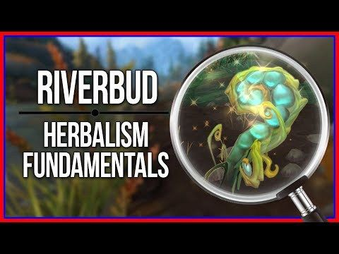 RIVERBUD FARMING | MMORPGS Guides | World of warcraft, Herbalism, World