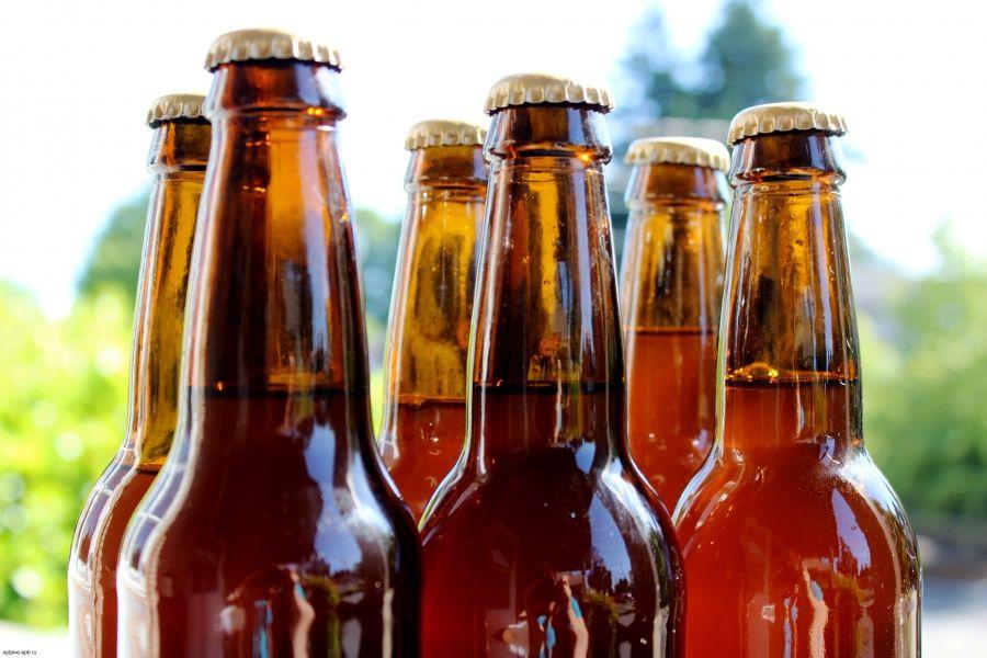 Купить оптом бутылочное пиво Питер