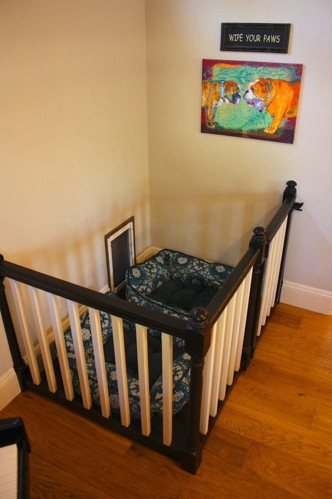 Best 25 Dog Playpen Ideas On Pinterest Dog Playpen