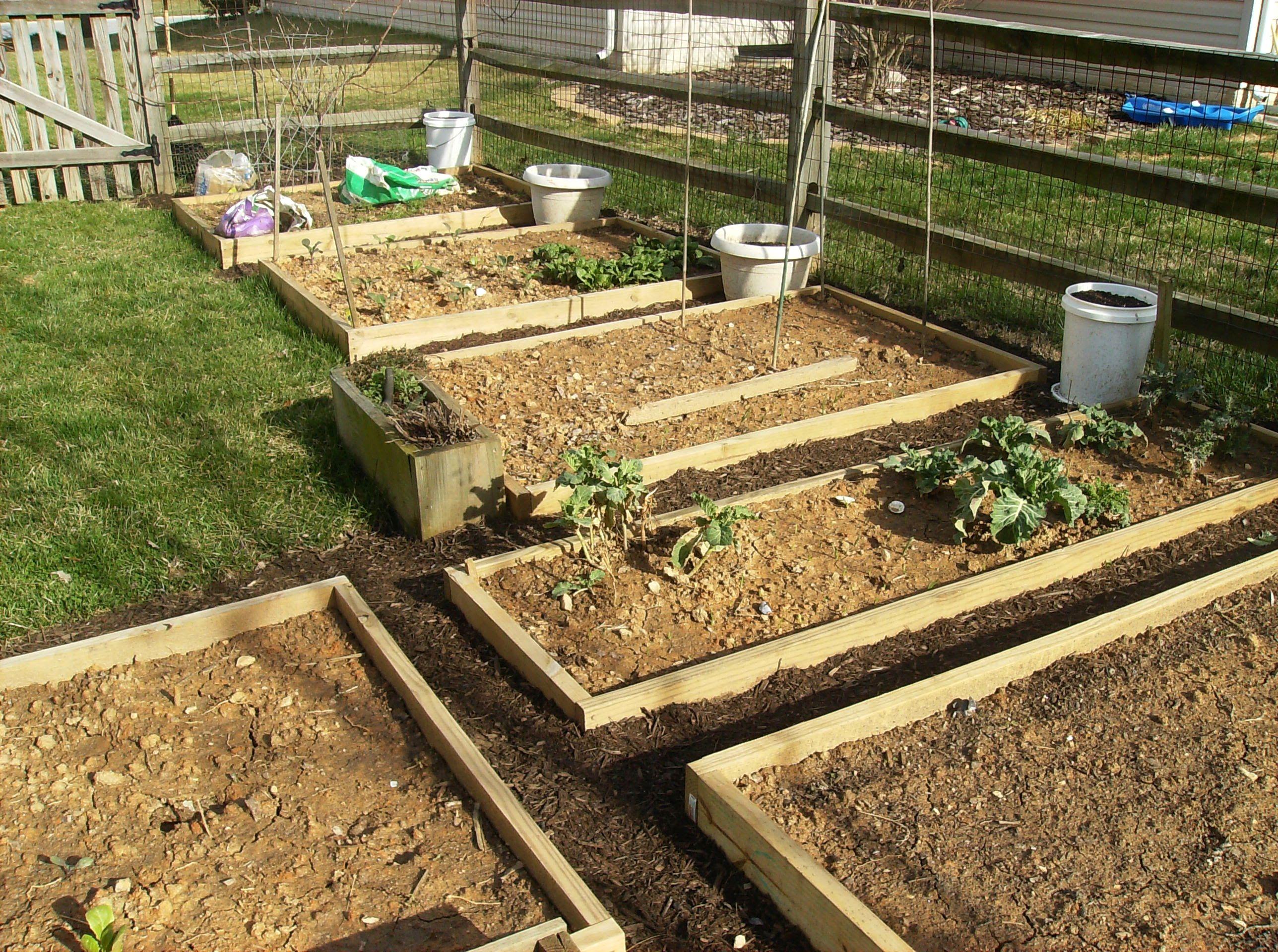 Garden Vegetable garden raised beds, Vegetable garden