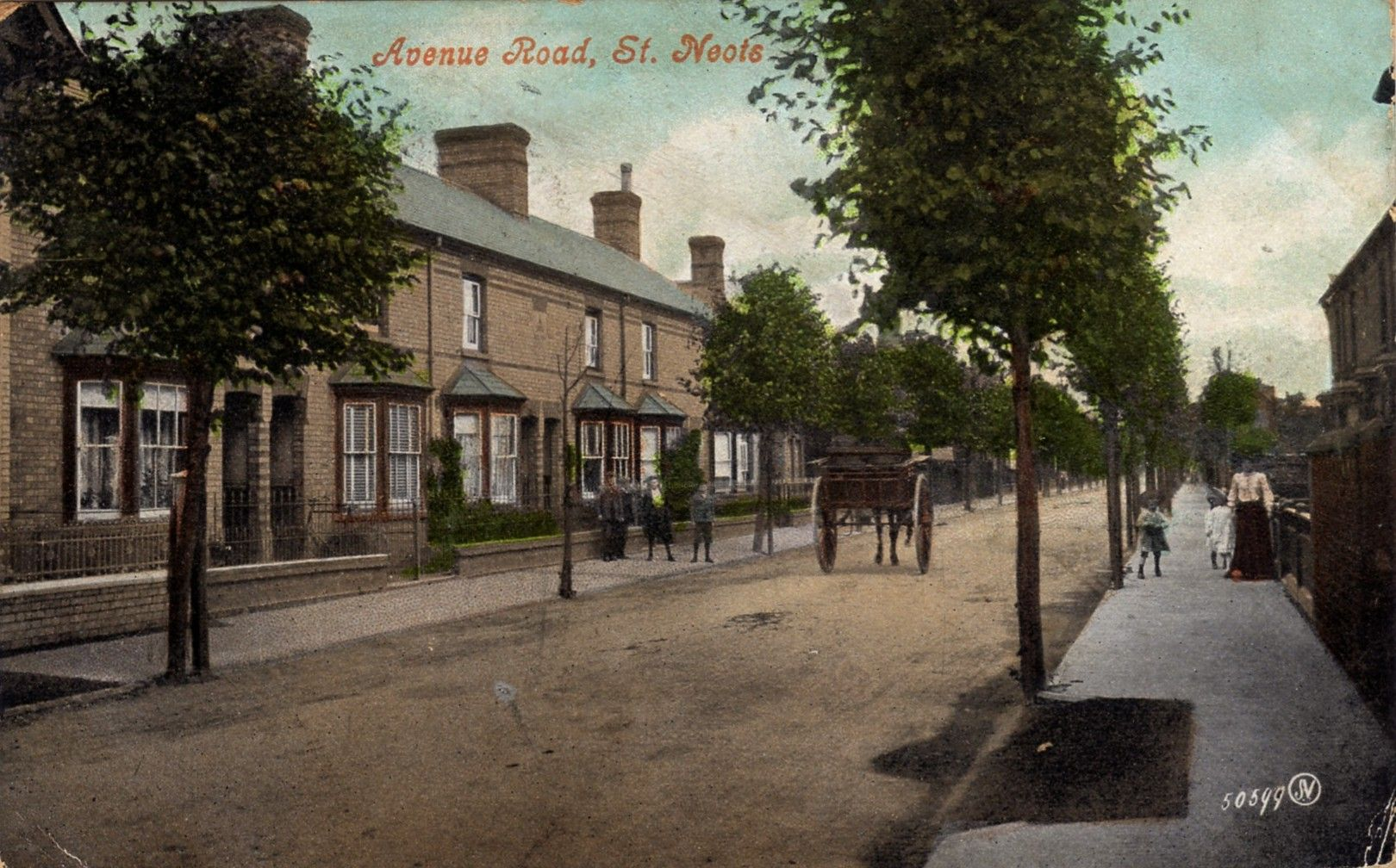Avenue Road St Neots When The Trees Were Still There In 1909