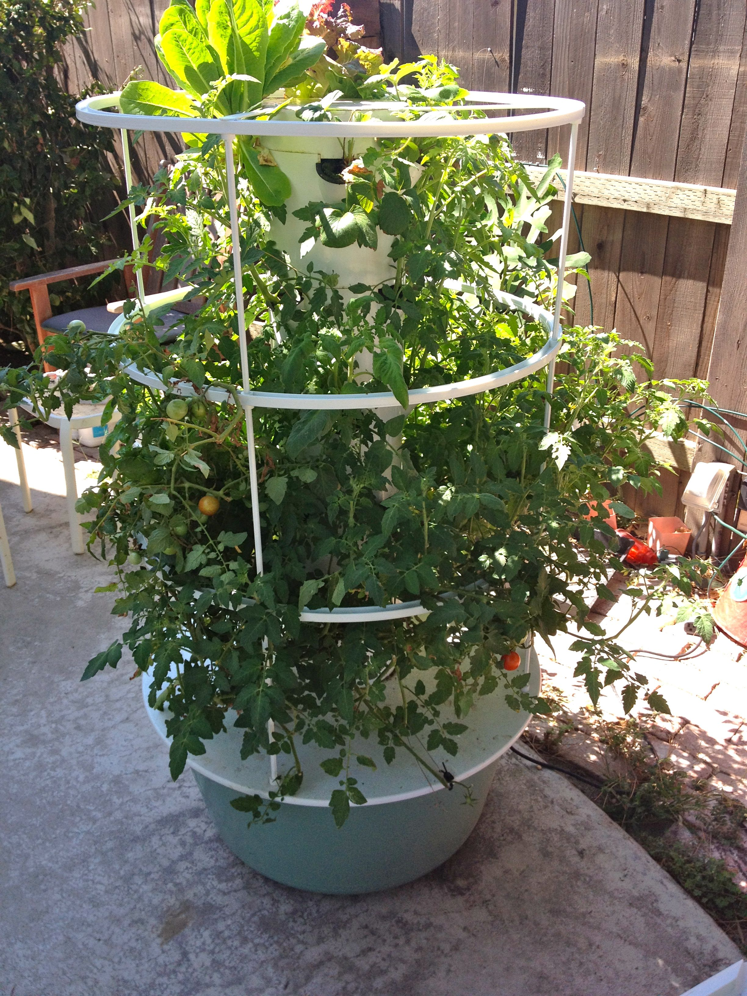Tower Garden Hydroponic for Sale   Hydroponic Tower