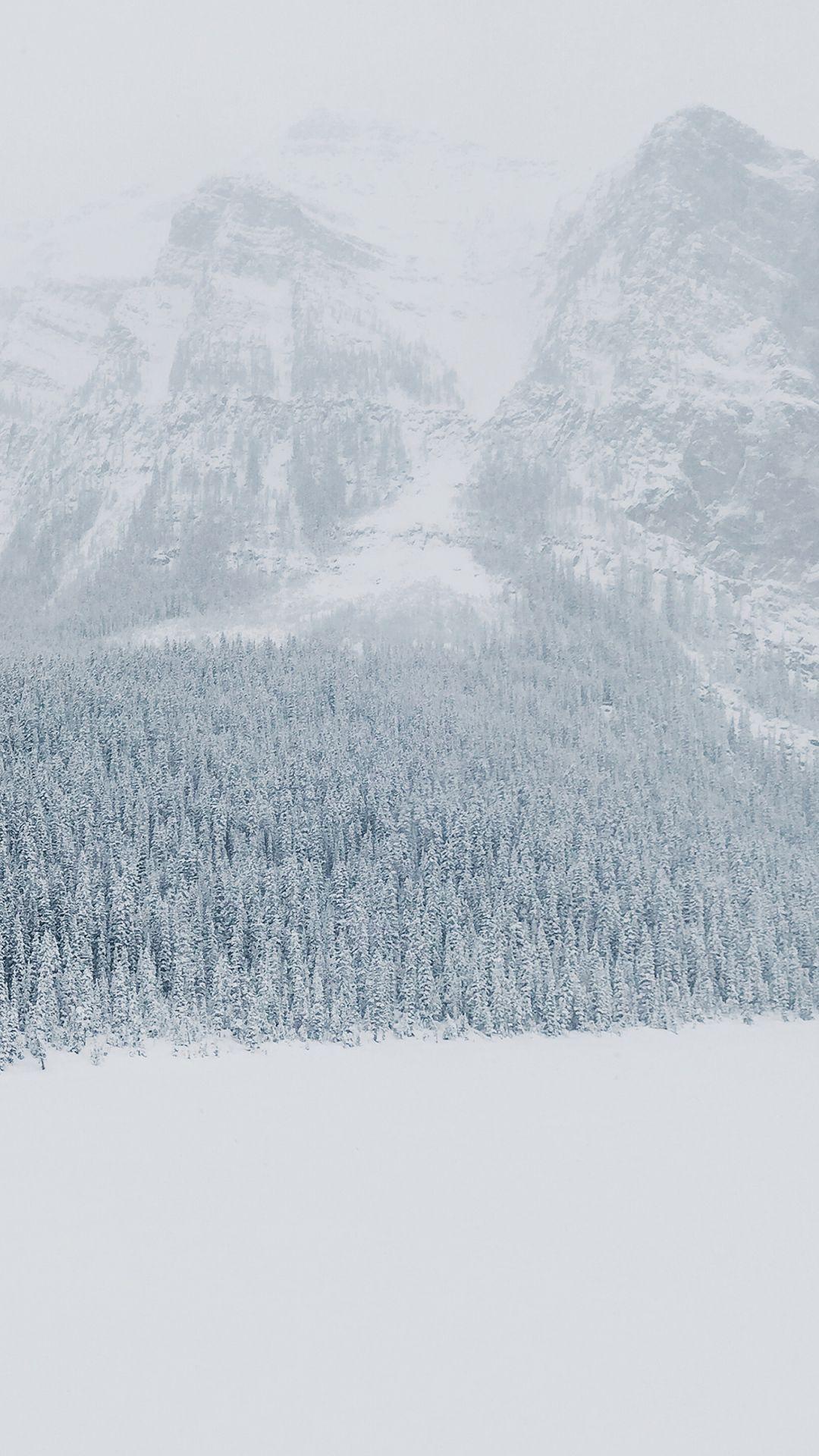 Download Wallpaper 1080x1920 Winter Snow Mountains Trees Sony Xperia Z1 Zl Z Samsung Galaxy S4 Htc One Hd Bac Infinity Wallpaper Mountain Wallpaper Snow