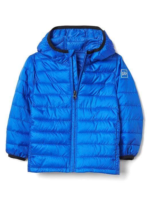 34ffc8d9d Gap Baby Coldcontrol Lite Puffer Hoodie Bristol Blue