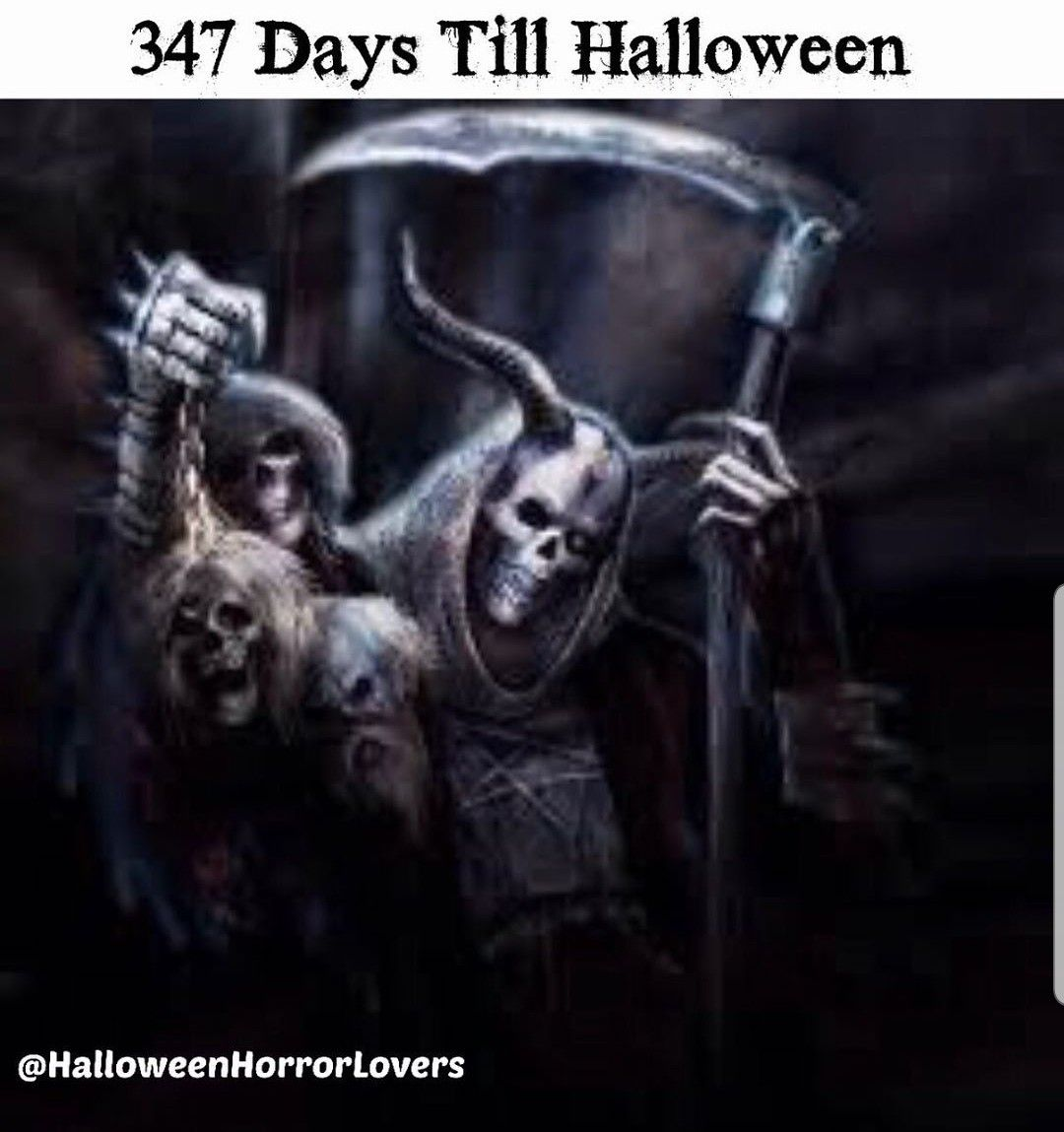 Pin by Hellbetty T♡ on Halloween is Coming Super healthy