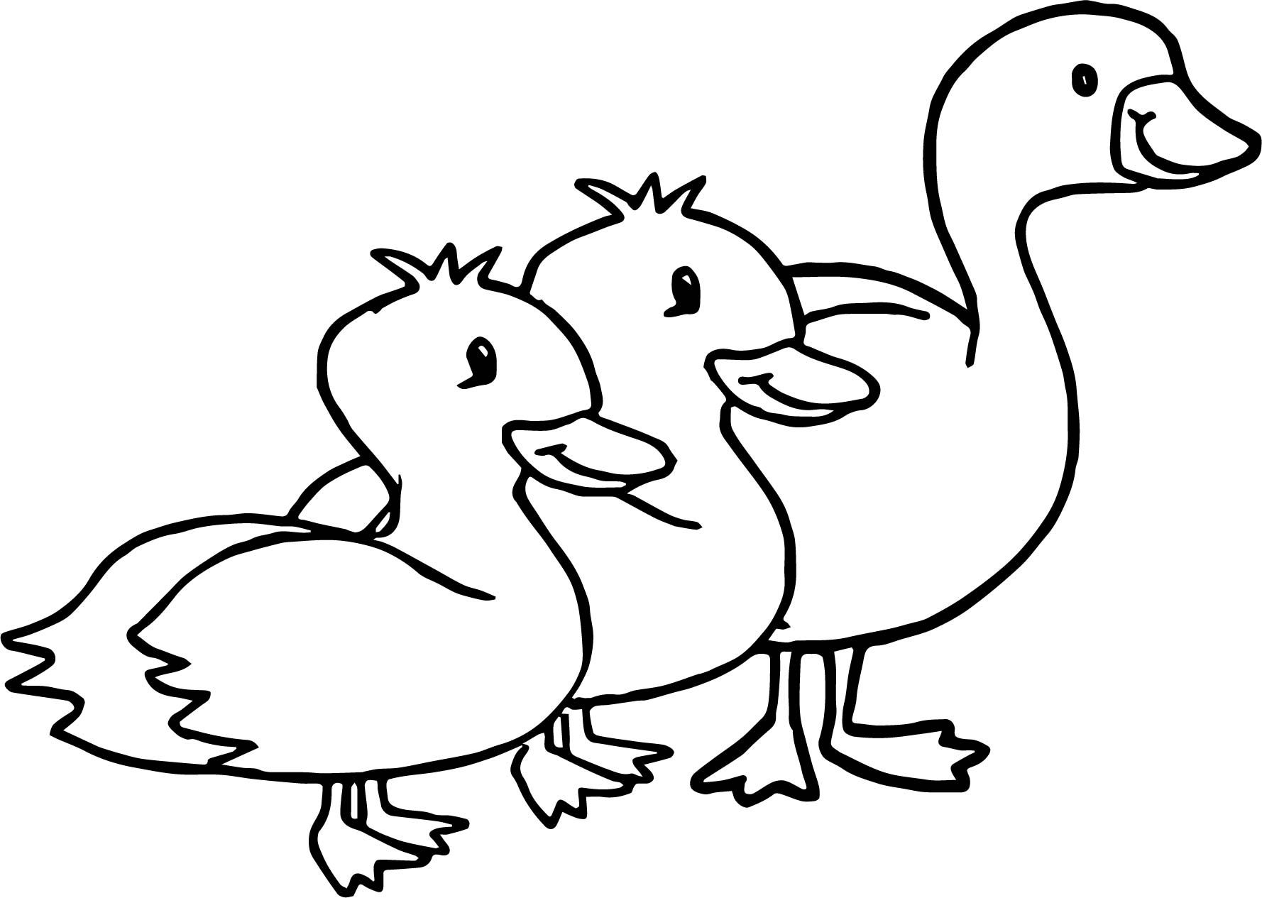 Nice Duck Goose Animal Coloring Page