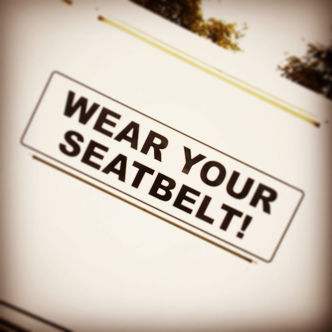 Seatbelts Save Lives...WEAR IT! Below100 Save life, How
