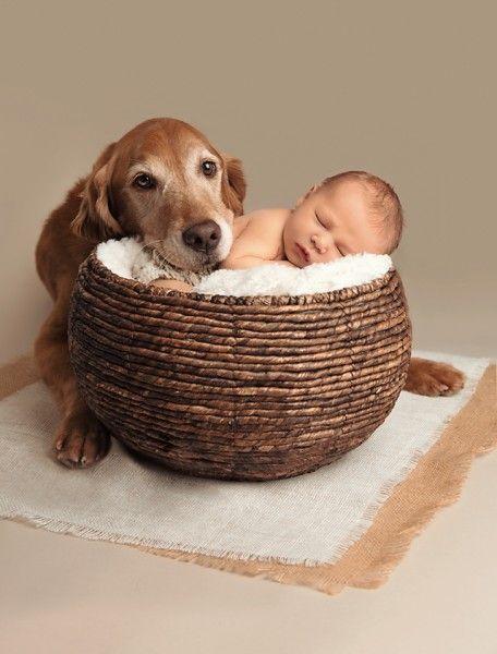 Studio Photography With Newborn Necessities Newborn Photography