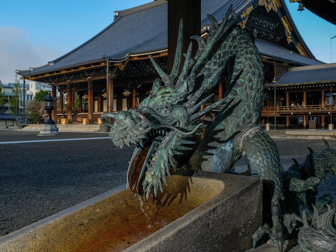#japan#dragon#tempel #kyoto#water  #japan#dragon#tempel #kyoto#water