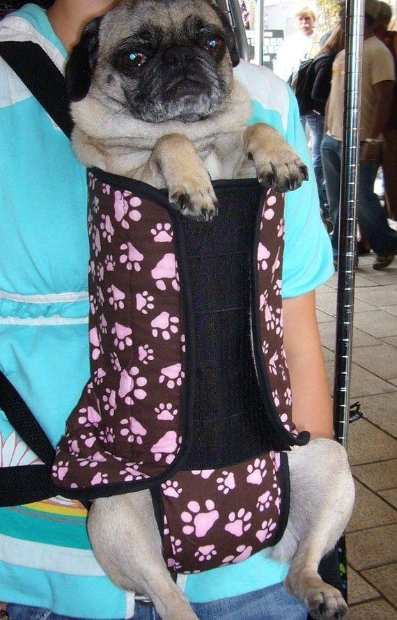 Best Pet Carrier For A Pug