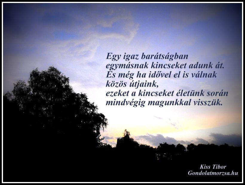 a barátság idézetek Pin by Henrietta Papp on Idézetek | Hungarian quotes, Life quotes