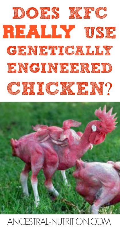 Does KFC Really Use Genetically Engineered Chicken | KFC ...
